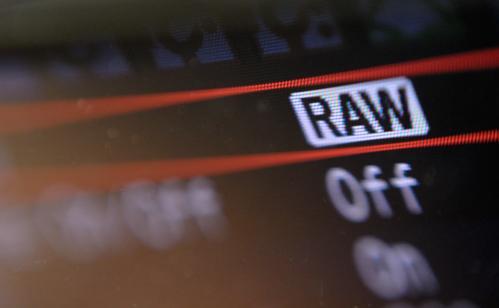 Keuntungan Menggunakan Format RAW