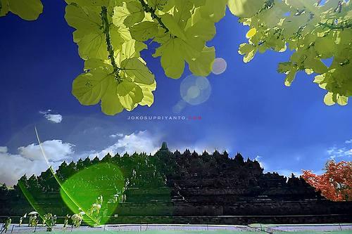 Lokasi Hunting Foto Di Yogyakarta