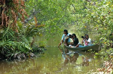 Lokasi Hunting Foto Satwa Liar di Sekitar Jakarta