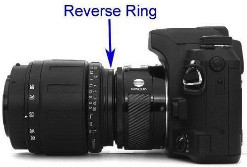 Cara Pasang Reverse Ring