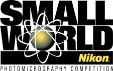 Nikon Small World Photo Contest