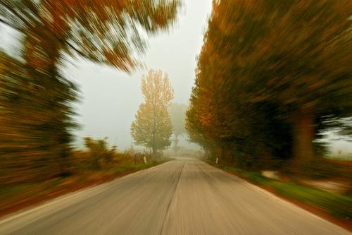 Teknik Zooming dalam Fotografi