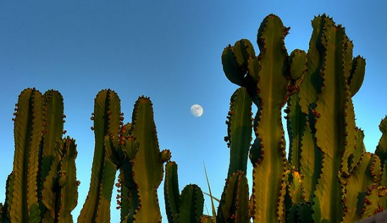 Foreground Memotret Bulan