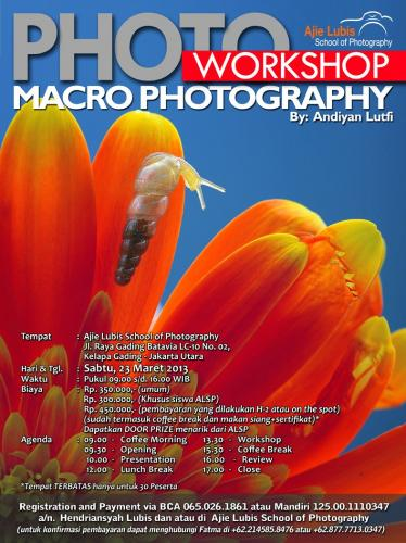 Info Workshop Macrophotography