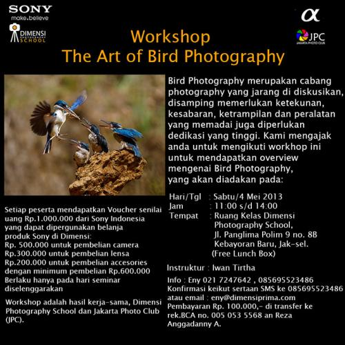 Workshop Bird Photography