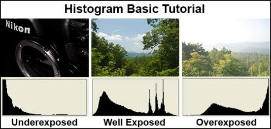 Panduan Membaca Histogram Foto