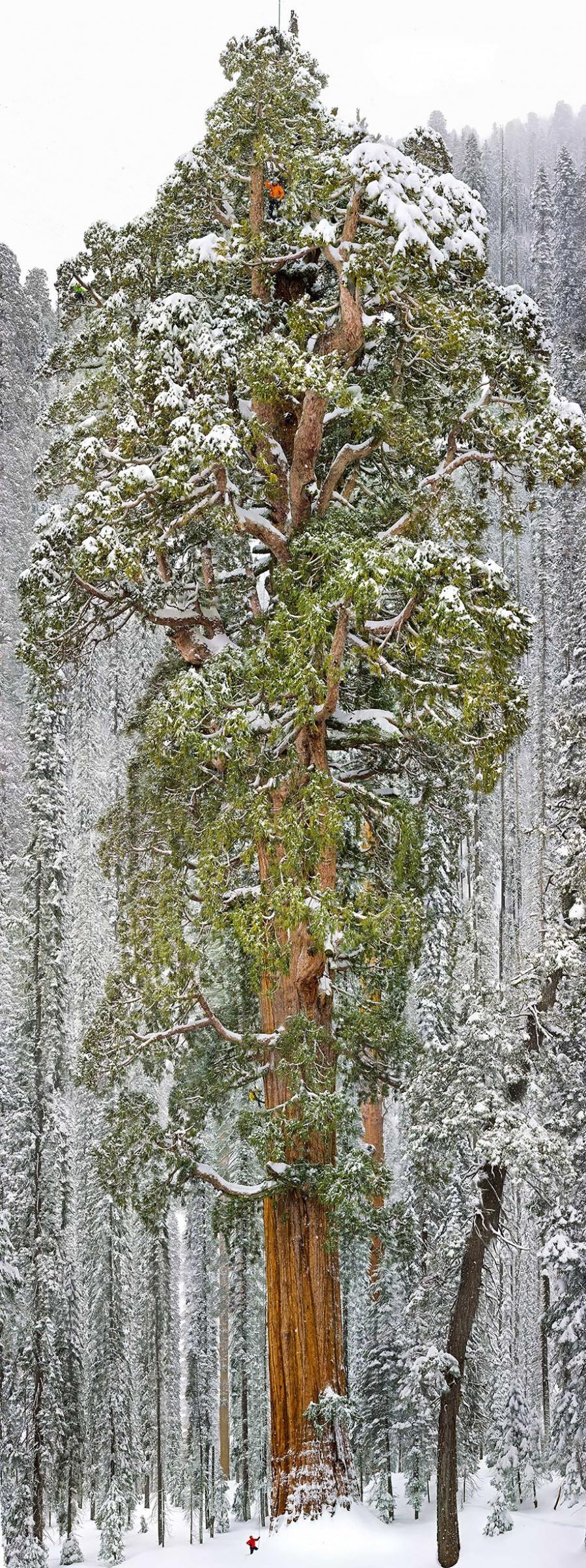 Contoh Foto Landscape Alam Terbaik
